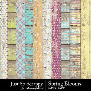 Spring blooms worn wood papers medium