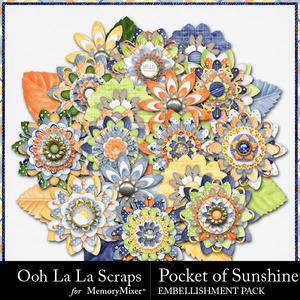 Pocket of sunshine flowers medium
