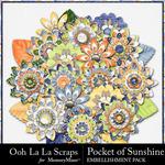 Pocket of Sunshine Flowers Pack-$1.75 (Ooh La La Scraps)