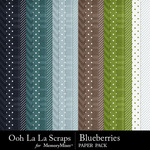 Blueberries pattern papers small