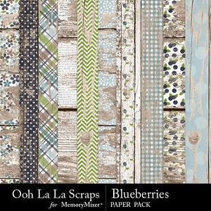 Blueberries worn wood papers medium