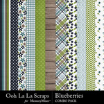Blueberries kit papers small