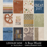 A Boys World Journal Cards Pack-$2.49 (Lindsay Jane)