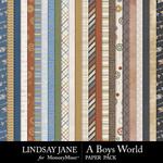 A Boys World Paper Pack-$2.99 (Lindsay Jane)