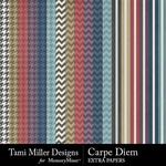 Carpe Diem Extra Paper Pack-$2.99 (Tami Miller)