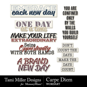 Tmd carpediem wordart medium