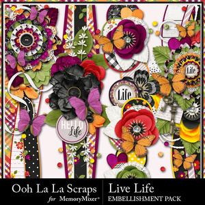 Live life page borders medium