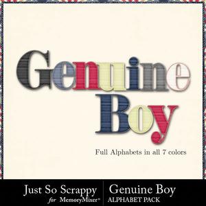 Genuine boy alphabets medium