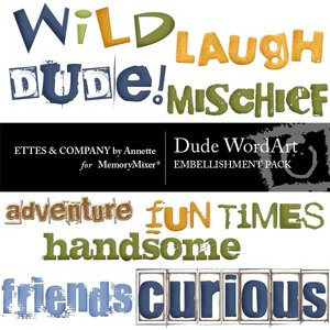 Dude wordart 1 medium