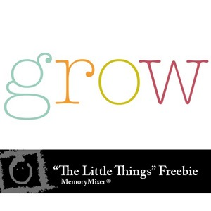 Tlt freebie label medium