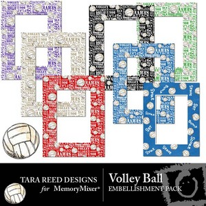 Volley ball emb medium