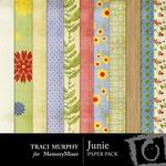 Junie Paper Pack-$4.00 (Traci Murphy)