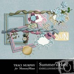 Summers Here Embellishment Pack-$2.99 (Traci Murphy)