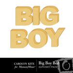 Big Boy Bed Alphabet Pack-$1.00 (Carolyn Kite)