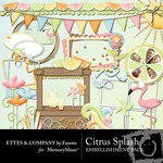Citrus Splash Embellishment Pack-$3.50 (Ettes and Company by Fayette)