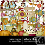 What a Hoot Embellishment Pack-$2.99 (Carolyn Kite)