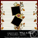 What a Hoot QuickMix-$3.99 (Carolyn Kite)