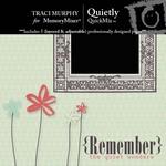 Quietly QuickMix-$4.00 (Traci Murphy)