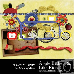 Tracimurphy applebaskets bikerides elements medium