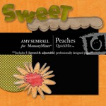 Peaches QuickMix-$4.00 (Amy Sumrall)