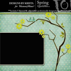 Spring medium