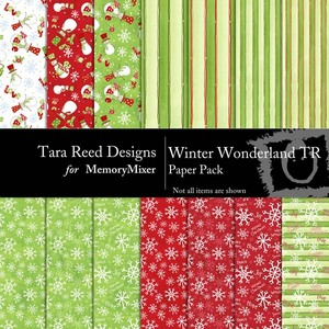 Winter wonderland tr pp medium