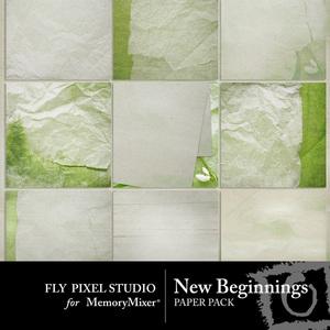 New beginnings fp pp medium
