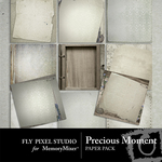 Precious Moment Paper Pack-$3.99 (Fly Pixel Studio)