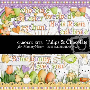Tulips and chocolate emb medium