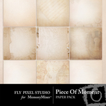 Piece Of Moment Paper Pack-$3.99 (Fly Pixel Studio)