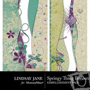 Springy thing border pack medium