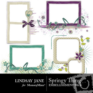 Springy thing frame pack pre 1 medium
