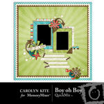 Boy oh Boy QuickMix-$3.99 (Carolyn Kite)