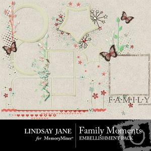 Family moments frame pack medium