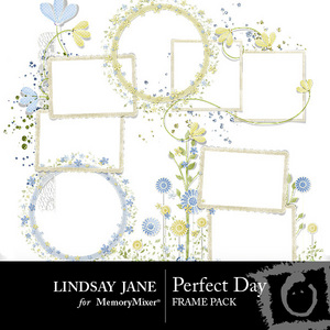 Perfect_day_frame_pack-medium