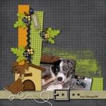 Pets_emb_samp_1-small
