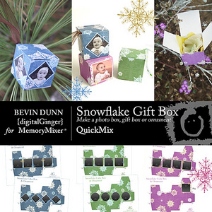 Snowflake box and ornament qm medium