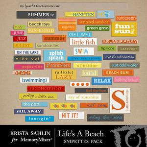 Lifes a beach snipettes medium