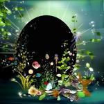 Aquatica qp p001 small