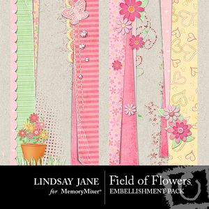 Field_of_flowers_borders-medium