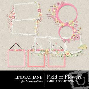 Field of flowers frames prev 1 medium