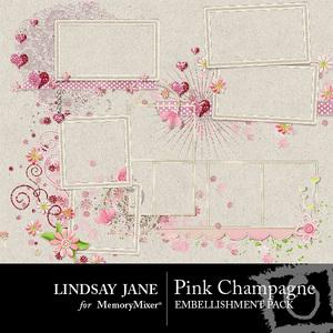 Pink_champagne_frames-medium
