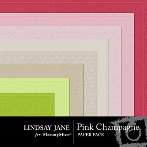 Pink champagne embossed pp medium