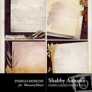 Shabby autumn designer pp medium