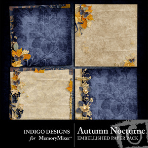 Autumn nocturne embellished pp medium