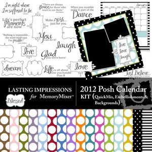 2012 posh calendar kit medium