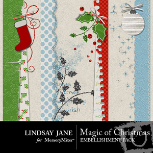 Magic of christmas borders medium