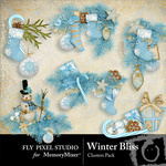 Winter Bliss Cluster Pack-$1.99 (Fly Pixel Studio)