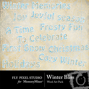 Winter_bliss_wa-medium