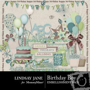 Birthday boy emb medium
